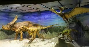 Дарвиновский музей в Москве пользуется популярностью